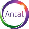 Antal International s.r.o. Vállalati profil