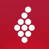 Vivino Company Profile