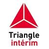 Triangle Profil de la société