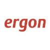 Ergon Informatik Vállalati profil