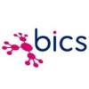 BICS Profilo Aziendale