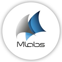 MLabs sp. z o.o. Company Profile