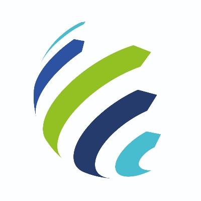 Stefanini Company Profile