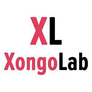 XongoLab Technologies LLP Company Profile