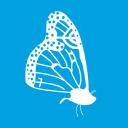 Aire Networks Company Profile