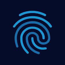 Blueline Профиль компании