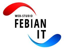 Febian IT Профиль компании