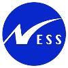 Ness Technologies Company Profile