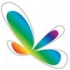 Movidius Company Profile