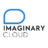 Imaginary Cloud Perfil da companhia