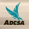 ADESA Europe Bedrijfsprofiel