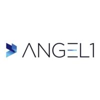 ANGEL 1 Company Profile