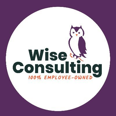 Wise Consulting Company Profile