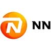 NN Group Company Profile