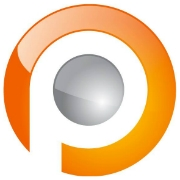 Pauwels Consulting Company Profile