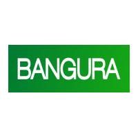 Bangura Solutions Företagsprofil