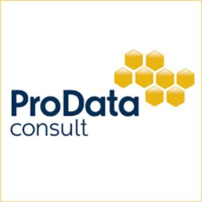 ProData Consult Company Profile