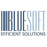 BlueSoft Company Profile