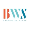 BWS Consulting Group GmbH Company Profile