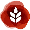 ITK Company Profile