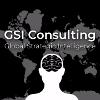 GSI Consultants Company Profile