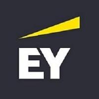 EY Company Profile