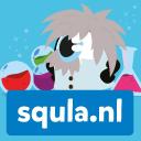 Squla Company Profile